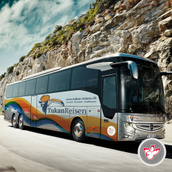 Setra, Mercedes, Neoplan Reisecar Linienbus