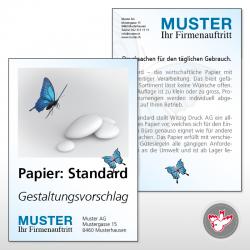 Flyer, Witzig Druck AG, FSC