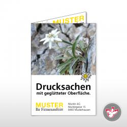 Karten, Witzig Druck AG