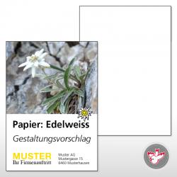 Karte A5, 4/0 Edelweiss 300...
