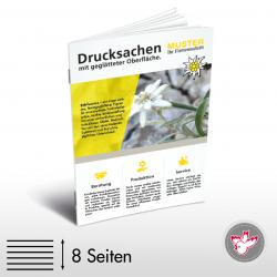 Broschüre, Witzig Druck AG