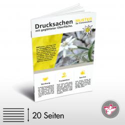 Firmenbroschüre, Witzig Druck AG