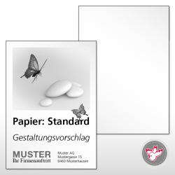 Flyer produzieren, Witzig Druck AG