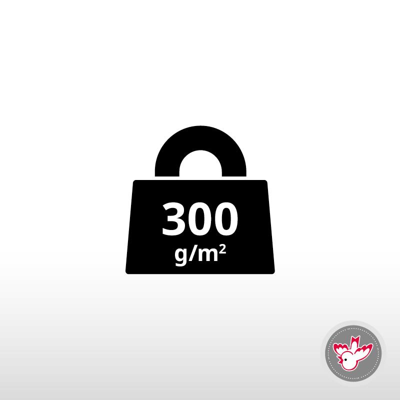 300 g/m²
