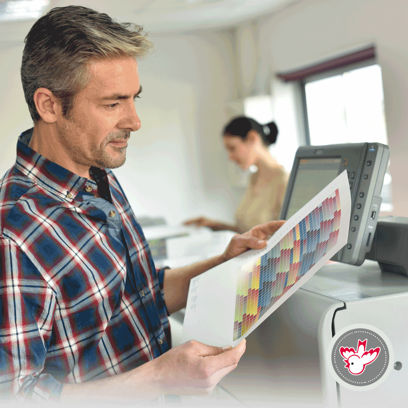 Digitaldrucker, Druckerei, Witzig Druck AG